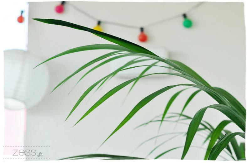 terrasse plante guirlande