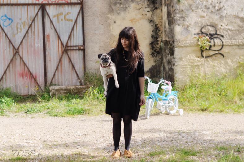 pug blog lifestyle mode