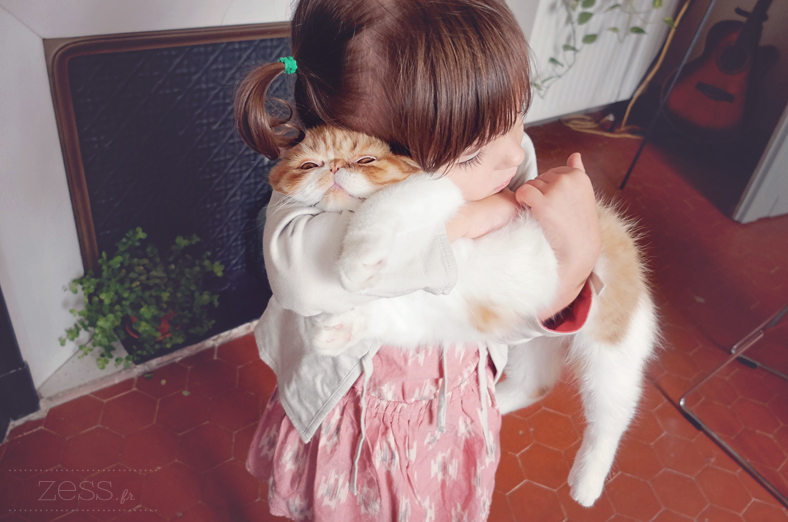 calin chat blog maman