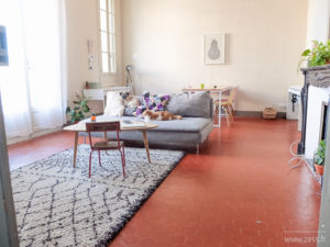 salon vintage scandinave tomettes appartement haussmanien