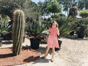 Reprage pour le jardin mais non pas de cactus ahellip
