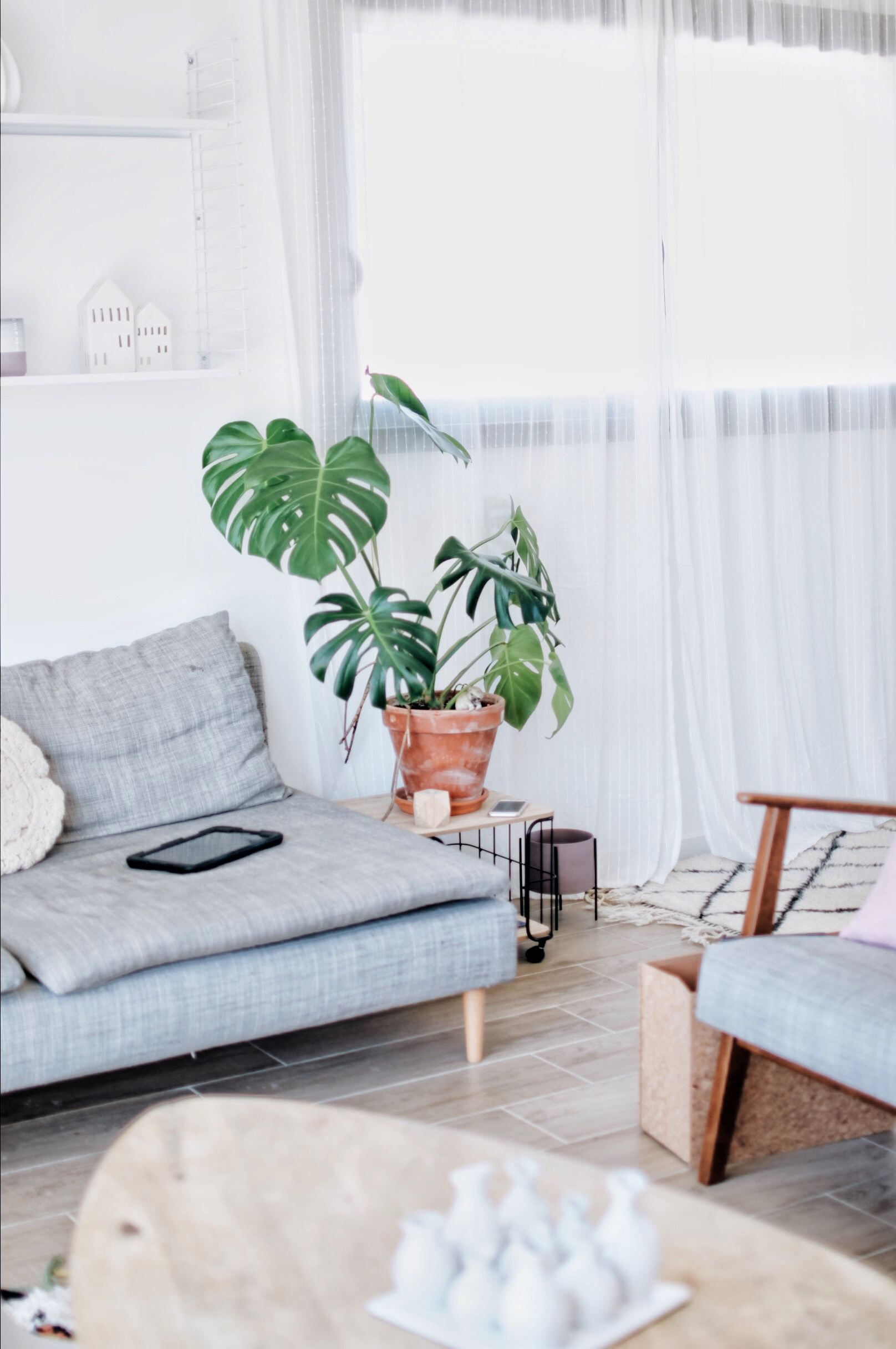 deco monstera home