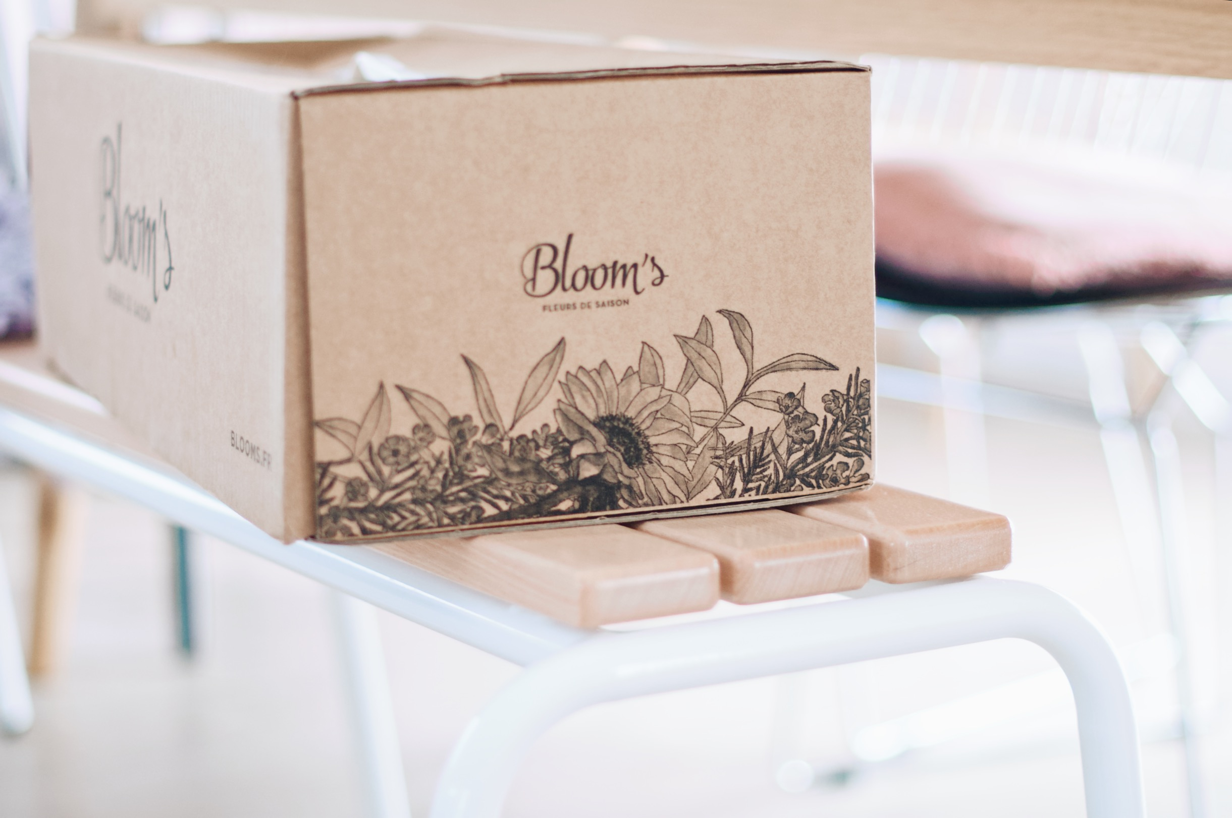 box bloom's