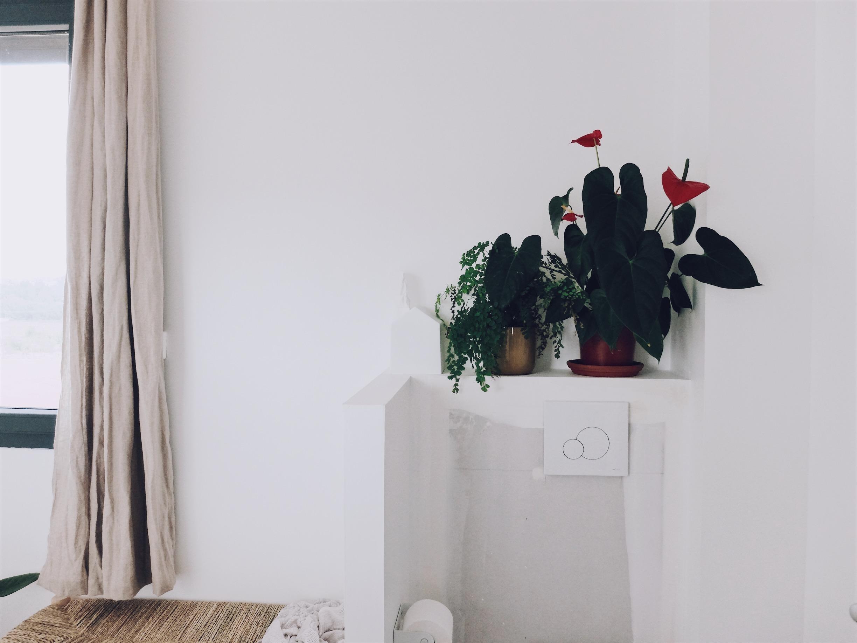 maison neuve déco WC suspendu