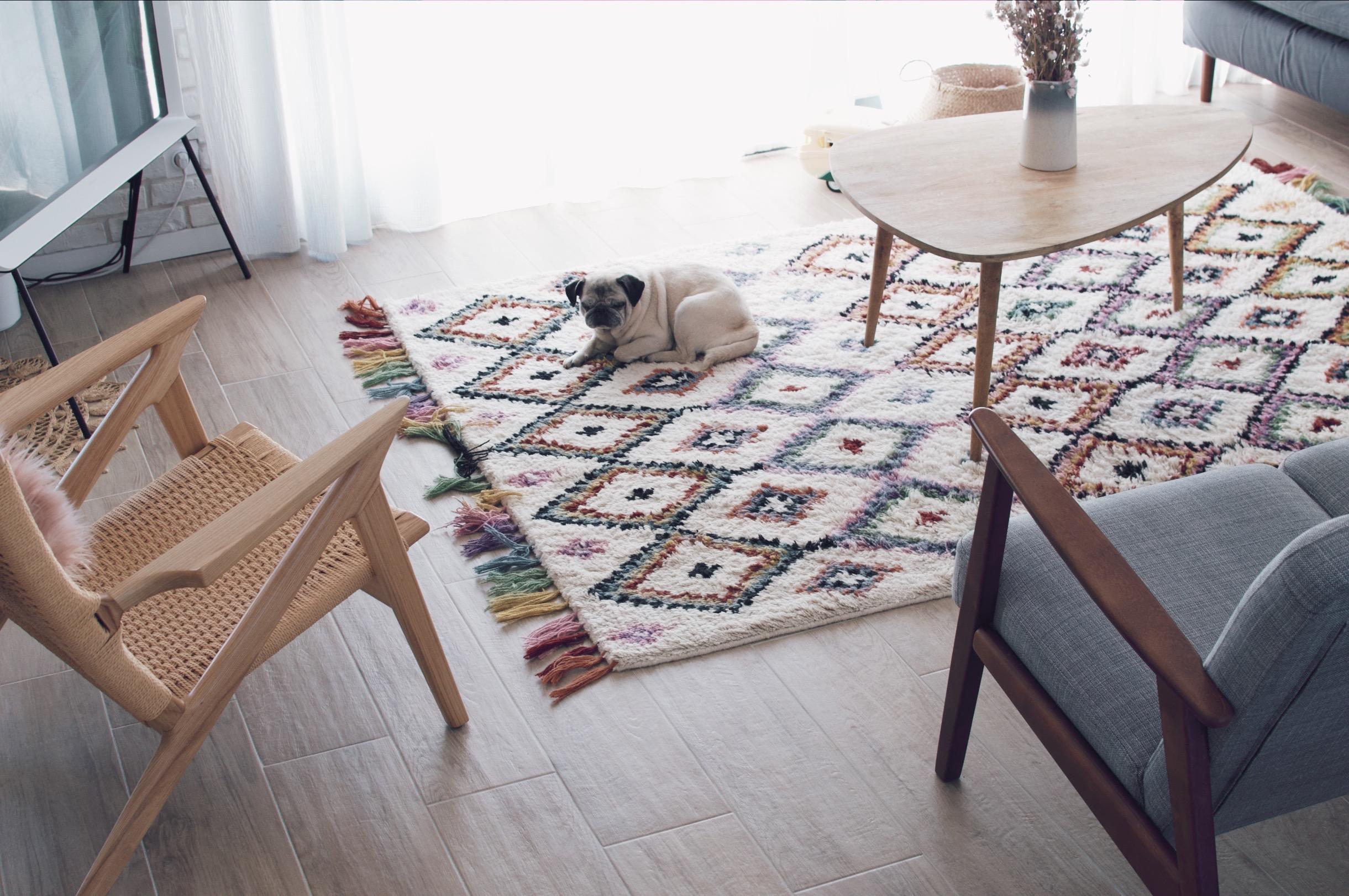 tapis berbère laredoute salon