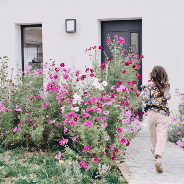 semer cosmos jardin