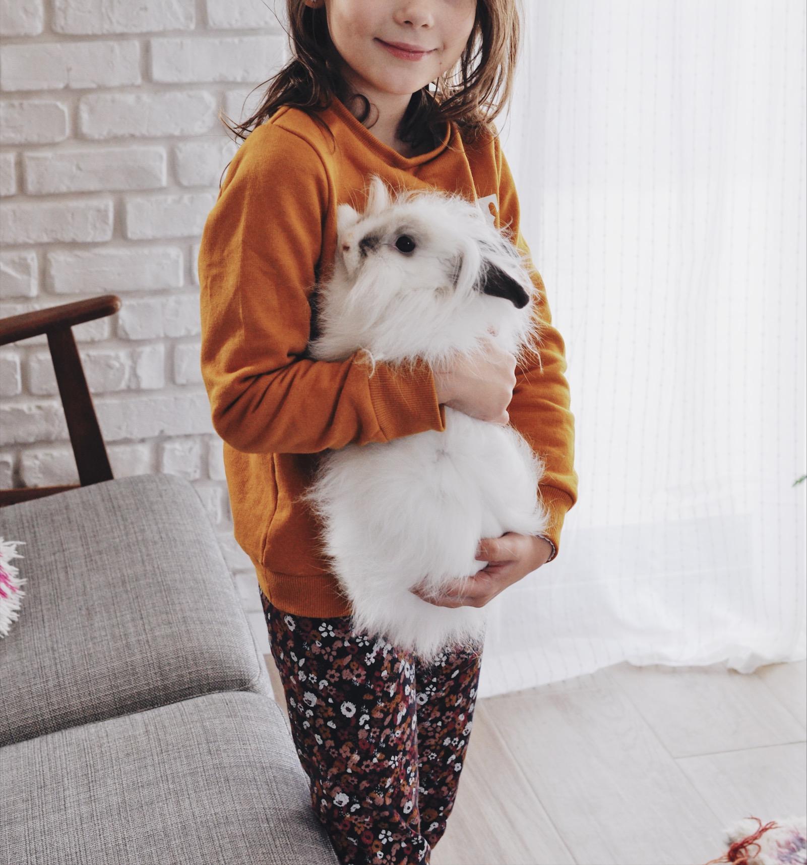 adopter un lapin conseil