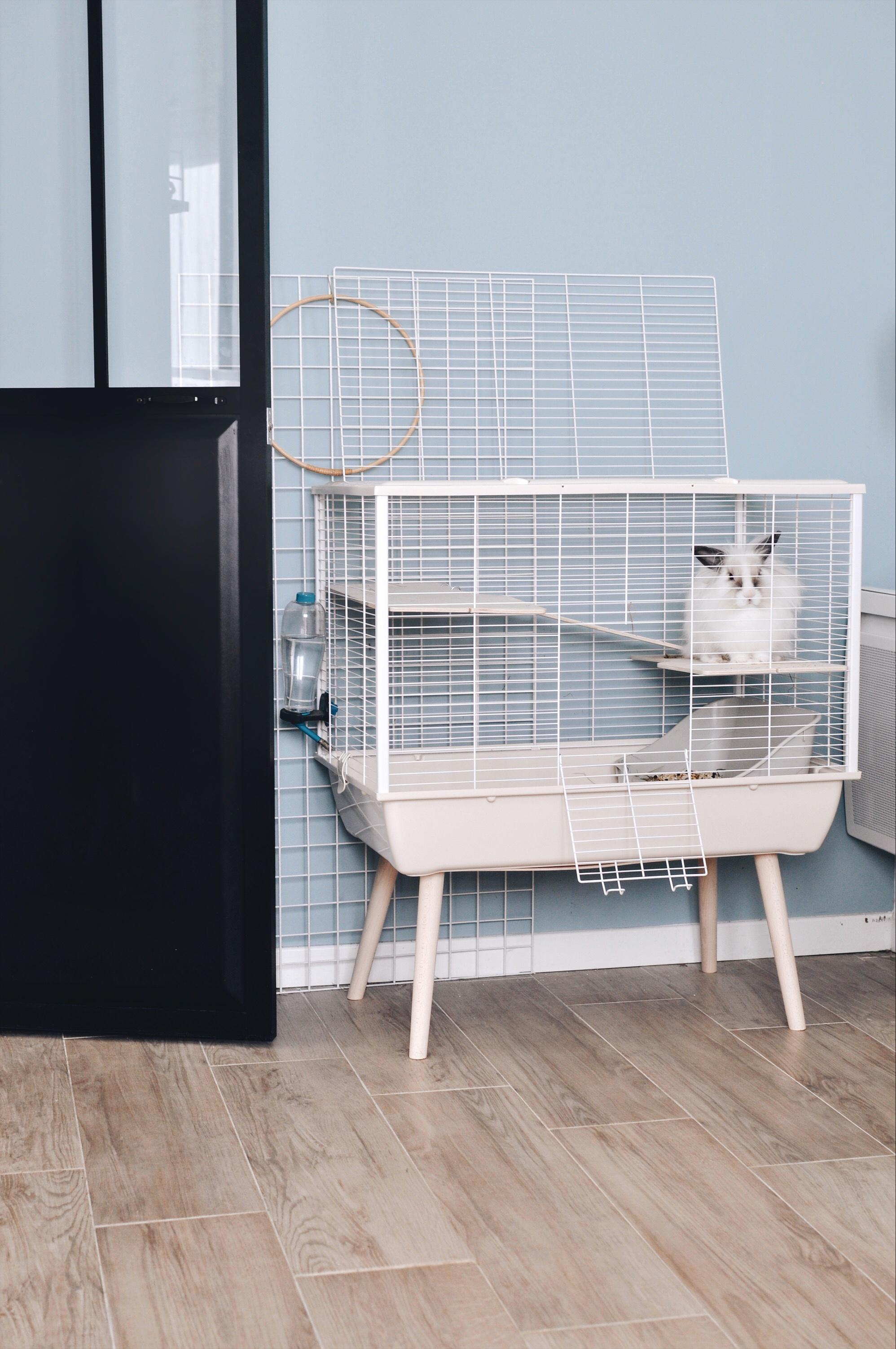 cage design lapin cochon d'inde