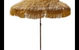 parasol raphia