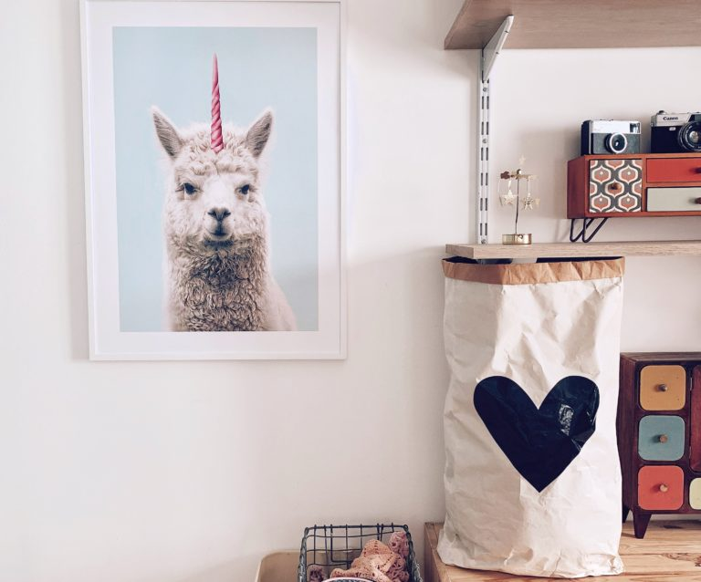 affiche desenio lama