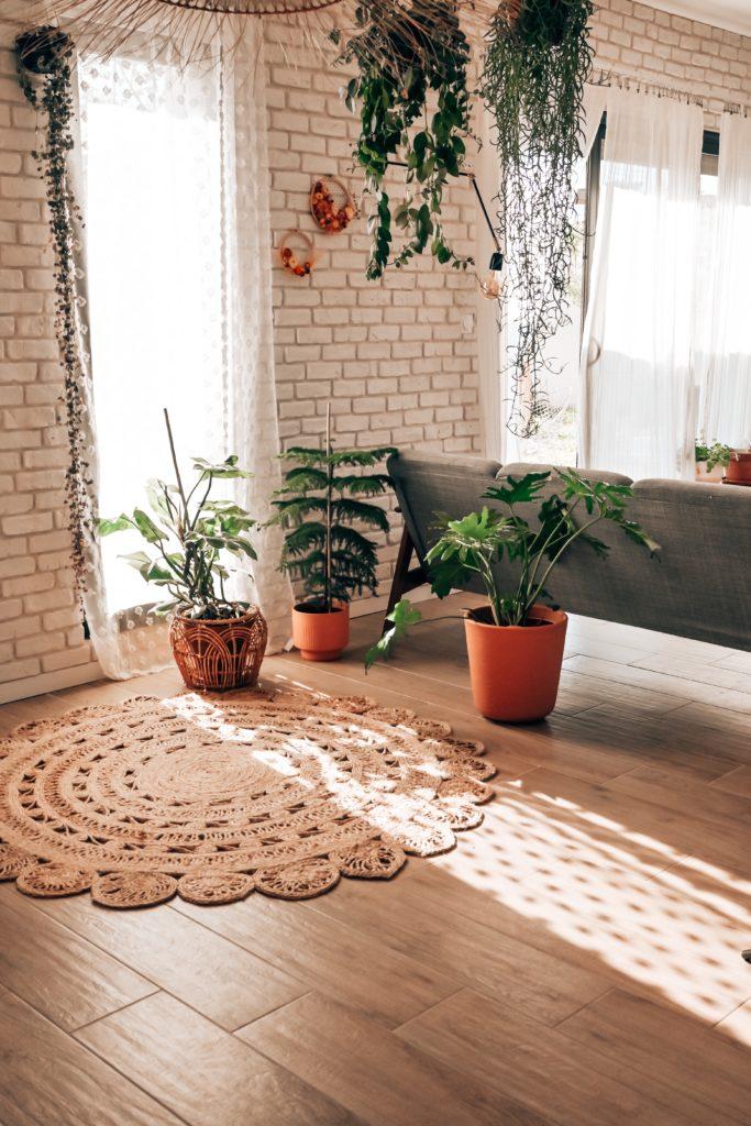 plantes addict deco