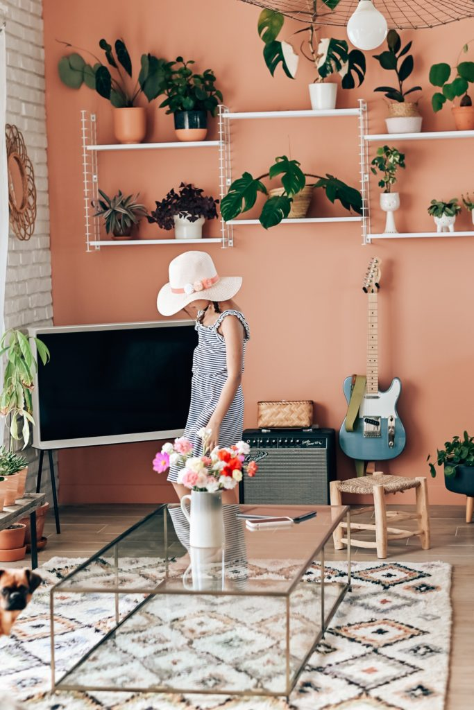 peinture mur rose deco et plantes