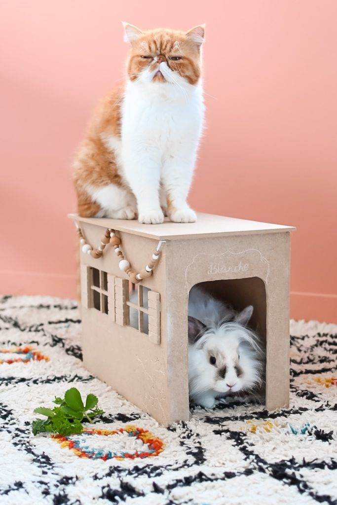 tuto cabane pour lapin