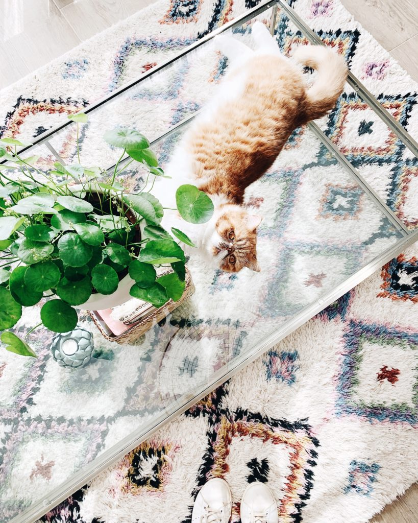 tapis berbère laredoute