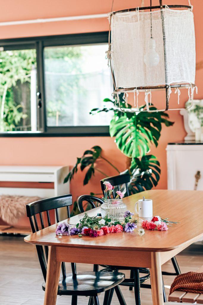 mur rose terracotta salon