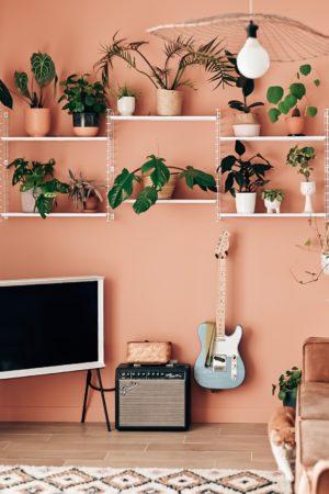 deco peinture mur rose salon
