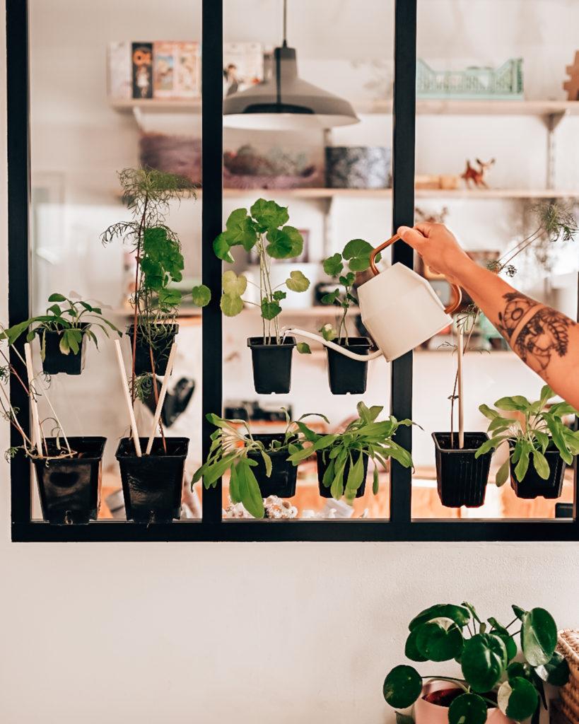 galerie végétale éphémère